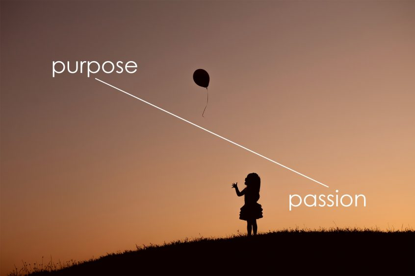 From passion to purpose business consulting